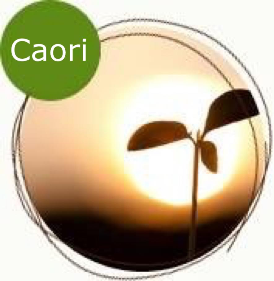 YOGA Cooria Caori